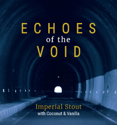 echoes of the void